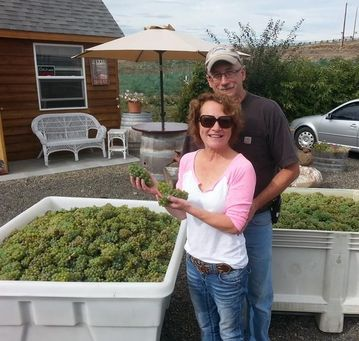 Troy & Kimberly Goodreau with their first estate-grown Riesling harvest.